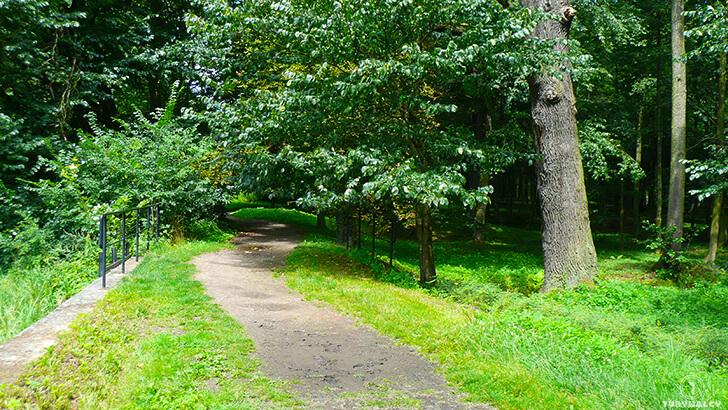 Zamek wMosznej czyli polski Hogwart zakazany las park