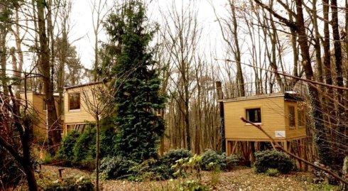 W drzewach odpoczynek w domkach na 20 m2