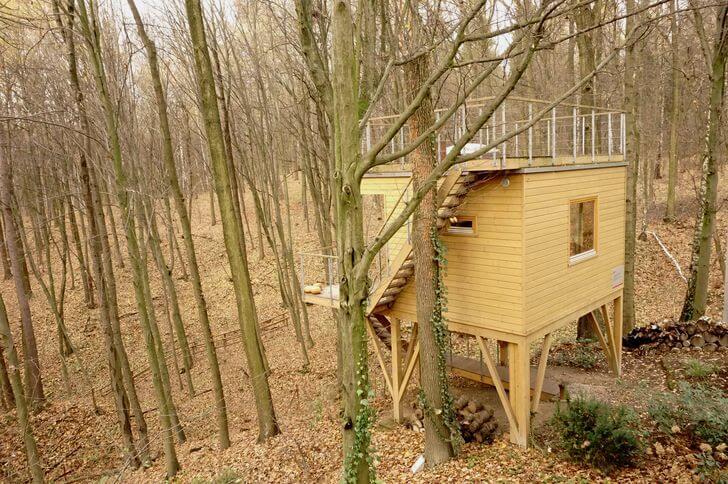 w drzewach domek grab