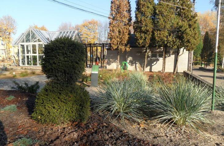 bytom atrakcje miniarboretum