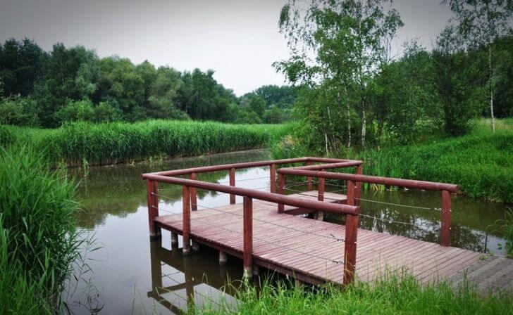 bytom atrakcje park mickiewicza