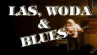las, woda & blues festiwale muzyczne wpolsce 2017