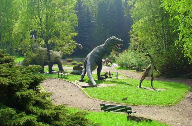100 atrakcji dla dzieci naśląsku - zoo